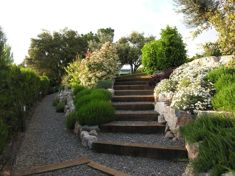 Servicios de jardiner a y plantas para jard n y terrazas for Jardines urbanos en terrazas